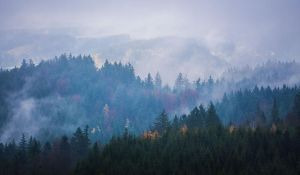 Breathing by aw-landscapes