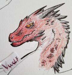 Smaug  by VerruckterWolf