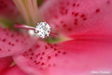 Ring by Bec-Nico