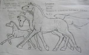 Sketch of Sundance Family by Dhria