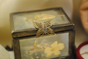 Butterfly Box 3 by marlirae