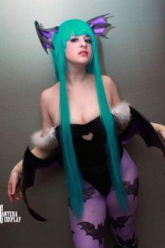 Winged Succubus by IchigeiCosplay