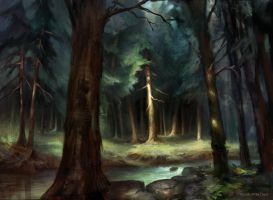 Forest (MPS Lands) by AdamPaquette