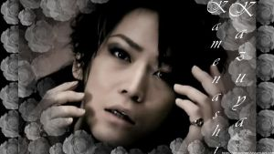 Kame NMP Roses Wall by KitWolfren