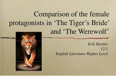 Erik Destler's Literature Presentation by ElysseFray111