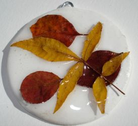 fall leaf collage on white by shatteress