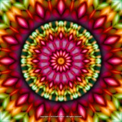 RE-EVOLUTION-Mandala by jeffdufour