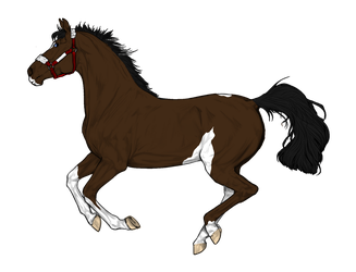 Bay Paint stallion adopt( Other Side) by NorthernMyth