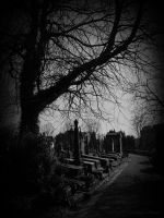 The old cemetry by xNatje