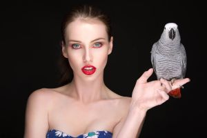 African Grey by MeganCoffey