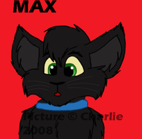My Kitty MAX by Charlie-Breen