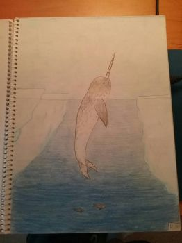Art Class Assignment: Narwhal by Erick-the-Druid