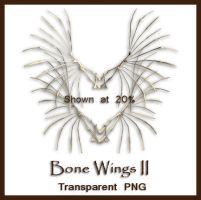 Bone Wings II by shd-stock