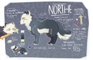 northe by noroir