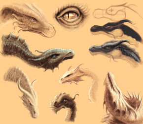 Dragons Sketches by hellmancrow