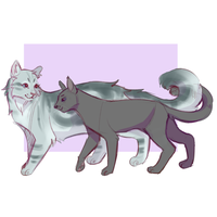 feathertail and crowpaw by Shimmerspirit