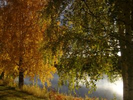 Autumn Riverside3 by miraculousm