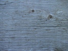 Old Wood Paneling by RosalineStock