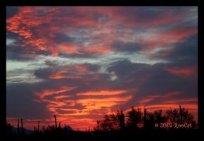 Late Spring Fiery Storm Sunset by RooCat