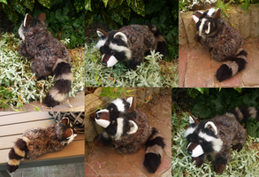 SOLD - Brown raccoon - small floppy by CyanFox3