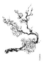 blossoming branch5 by zlatvic