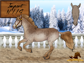 -CLOSED- Drengir Hross : Import 117 by BlueAlexArts