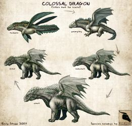 Colossal Dragon Concept Commission by EmilyStepp