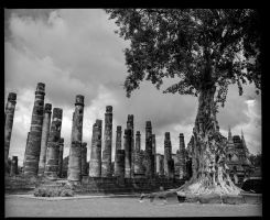 Sukhothai temple complex #2 by Roger-Wilco-66