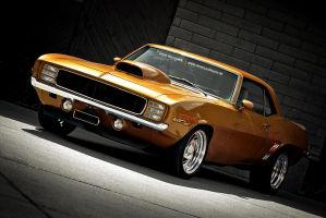 Golden Camaro by AmericanMuscle