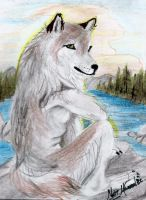 Anthro Wolf drawing practice by Graywolf95