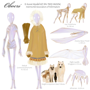 Reference Sheet: Obocri by DreamingFoxfire