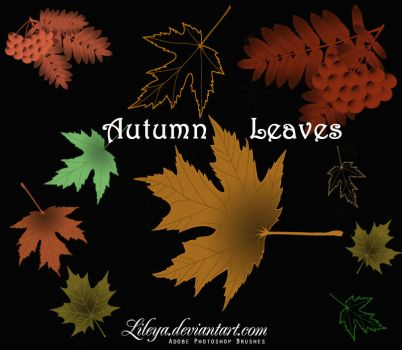 Autumn Leaves by Lileya