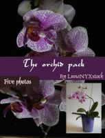 The Orchid pack by LunaNYXstock