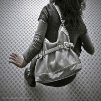 the gray metal bag by Vic4U