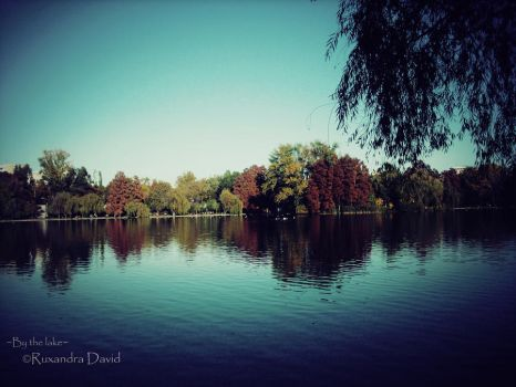By the lake by ruxi27