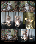 Plushie: Rudy the Rat Teddy