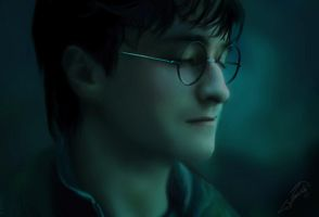 Harry Potter by milou15