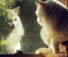 When Will My Reflection Show.. by ibjennyjenny