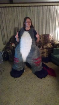 2.0 Abaddon Fursuit - Front by SafireCreations