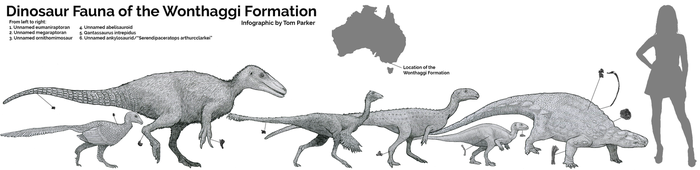 Dinosaur Fauna of the Wonthaggi Formation by Tomozaurus