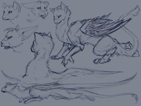 Trico Stream Sketches by Mollish