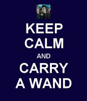 Keep Calm and Carry a Wand. by EmNicolee
