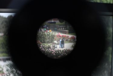 Through the Looking-Glass by chris