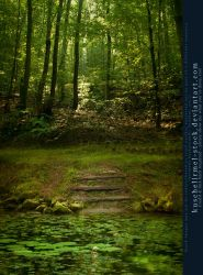 Premade BG - Pond With Stairs In The Woods by kuschelirmel-stock
