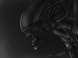 _Xenomorph_ by TheBeastyDragoness