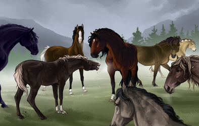 Dzhin meeting the herd by CSStables