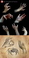Hand Reference Photos by Maquenda
