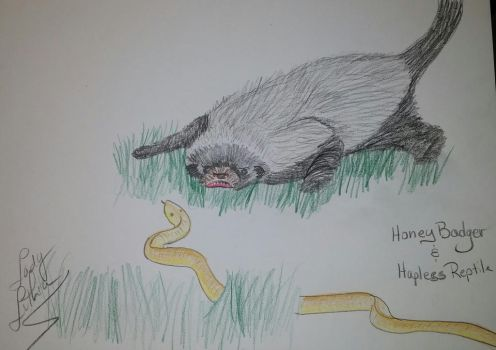 Honey Badger by ladylithia