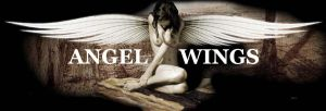 Angel wings by c4ligo