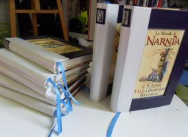 Narnia's Chronicle by AtelierOcarinah